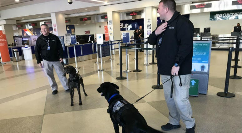 It's one of the ways the Transportation Security Administration sniffs out potential security threats at airports, including Philadelphia International Airport