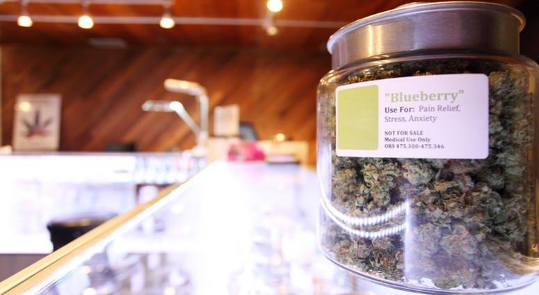Medical marijuana in large jar at a legal marijuana dispensary.