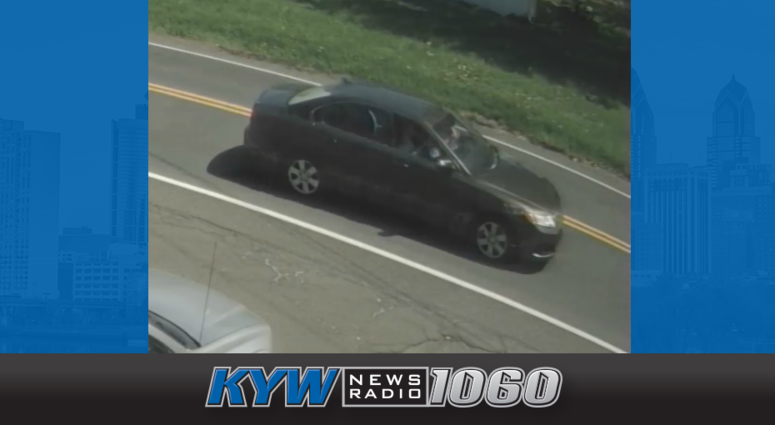 A passenger in this car took a shot at a driver who honked his horn.