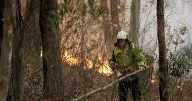 A firefighter keeps an eye on a controlled burn used to control a larger fire near Burrill Lake, Australia, Sunday.