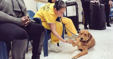 """It was a doggone special day for some lucky K9s in Camden County. Four rescued dogs graduated from the """"Friends 4 Vets"""" program after spending weeks being trained by incarcerated individuals at the Camden County Correctional Facility."""