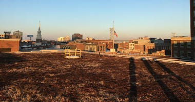 Green roof in Old City, Philadelphia