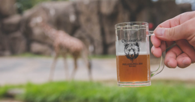 Tickets are still available for OktoBEARfest, a beer festival featuring more than 100 brews from nearly 50 breweries.