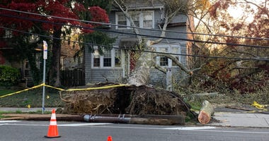 These trees and power lines came down along the White Horse Pike near Haddon Street in Haddon Heights.