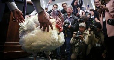 Press Secretary Sarah Huckabee Sanders presents Wishbone the turkey in the Brady Press Briefing Room to members of the media in White House on Nov. 21, 2017.