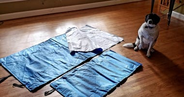 Laura Faust creates blankets and mats for the homeless out of upcycled material used for wrapping surgical instruments. Pictured: Faust's dog.