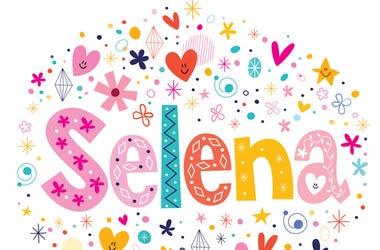 Selena Mac cosmetics