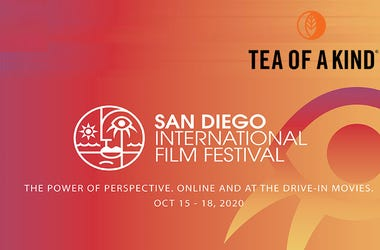 San Diego International Film Festival