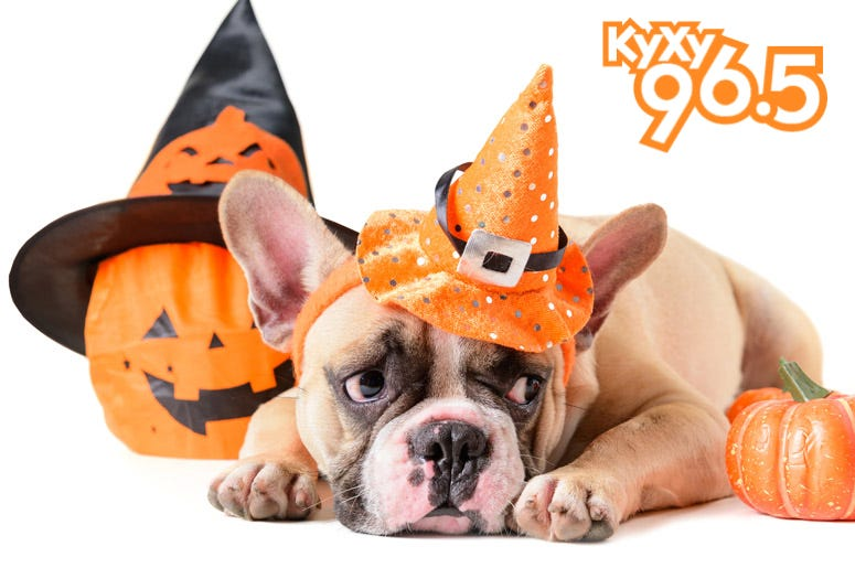 KyXy Halloween Contest