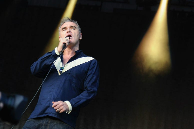 Morrissey performs onstage during day 2 of the Firefly Music Festival on June 19, 2015 in Dover, Delaware.
