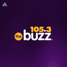 105.3 The Buzz