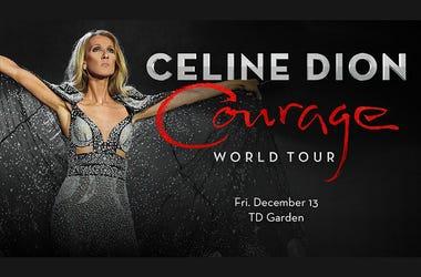 Celine Dion Courage Tour