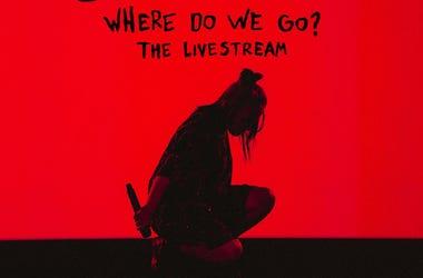 Billie Eilish-Where Do We Go Tour