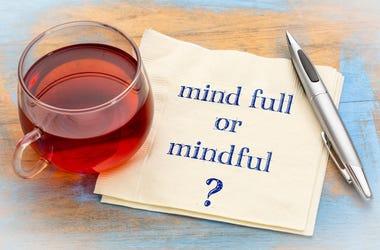 MInd Full Mindfulness