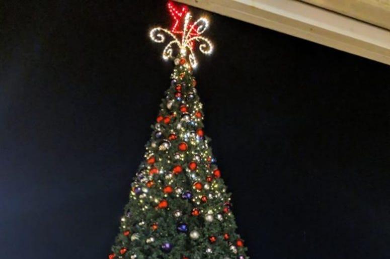 Star Th Domain Tree 2019 HR photo
