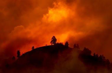 Australian Fires