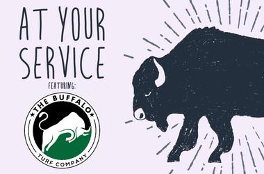 the Buffalo Turf Company