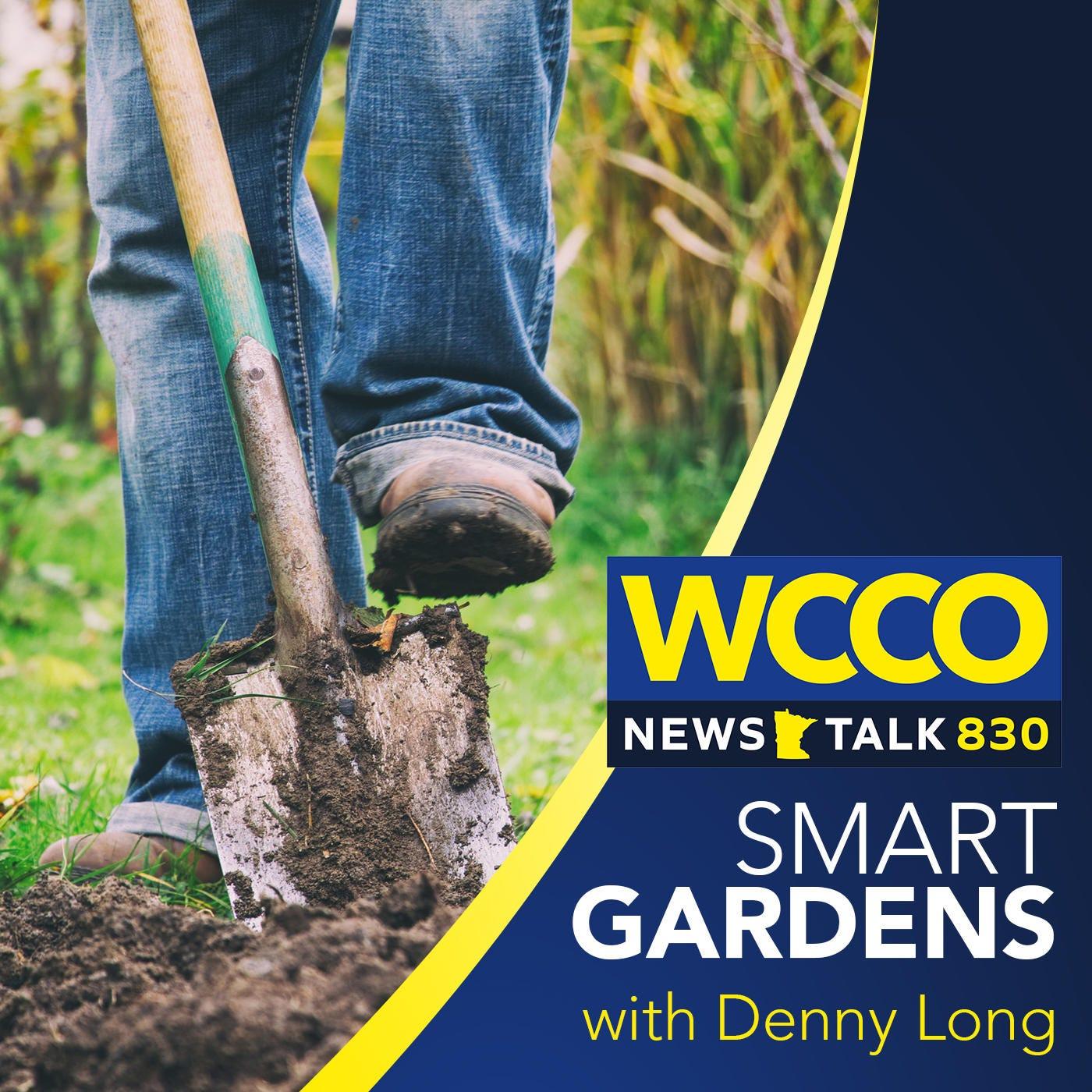 WCCO's Smart Gardens
