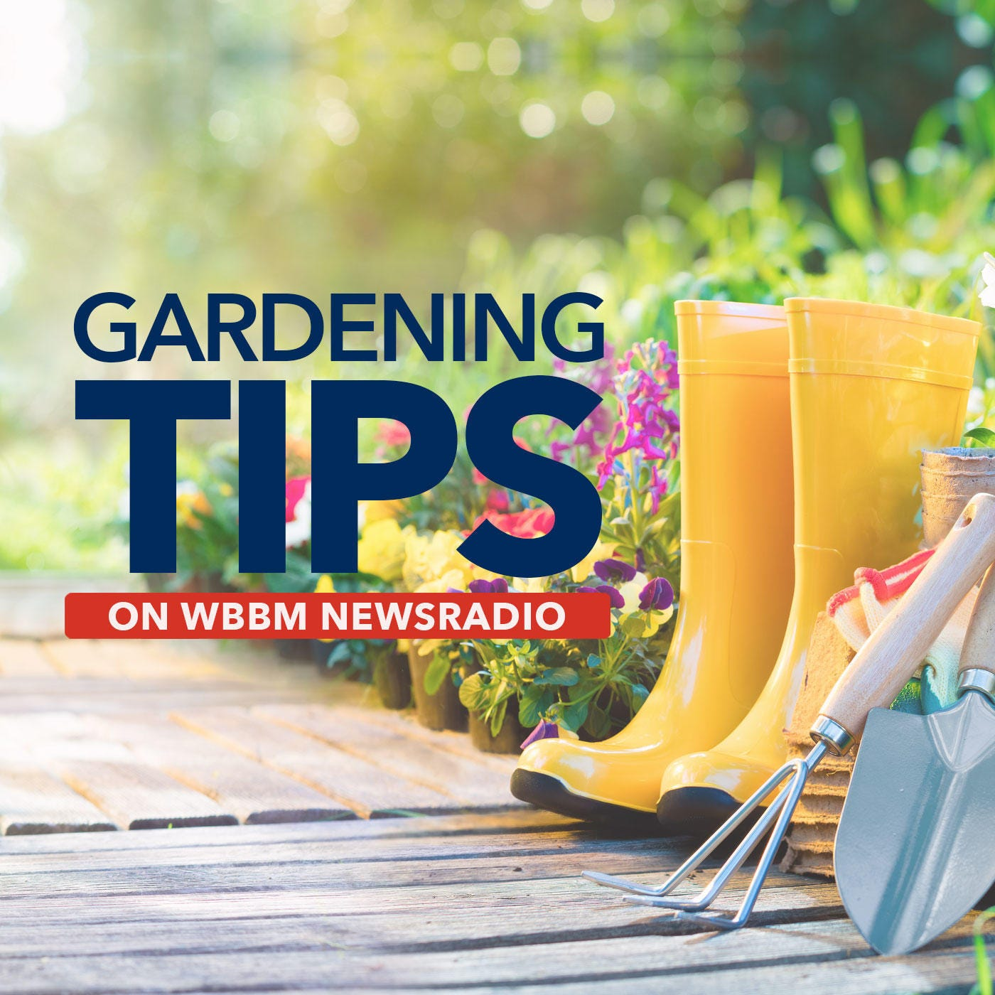 Gardening Tips on WBBM Newsradio