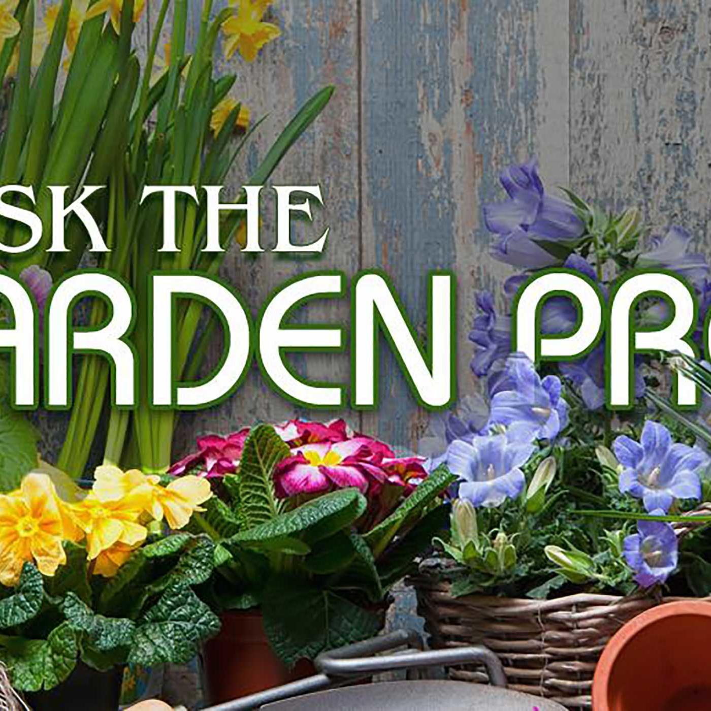 Ask The Garden Pros