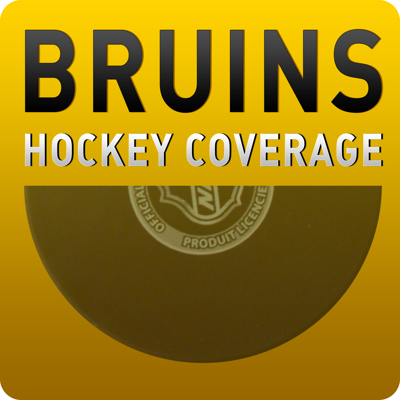 Boston Bruins Hockey