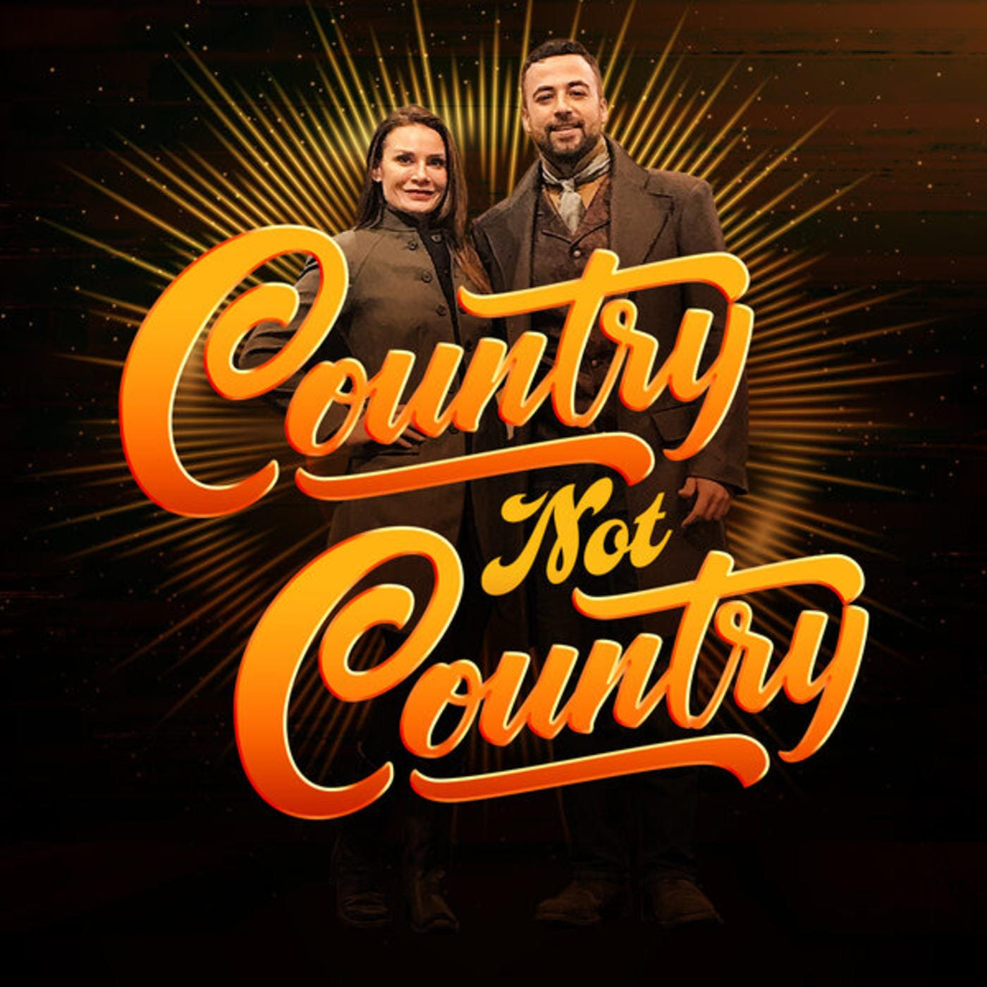 Details about  /I LOVE COUNTRY MUSIC