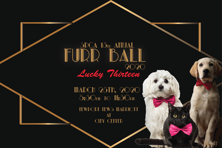 2020 Fur Ball Graphic.png