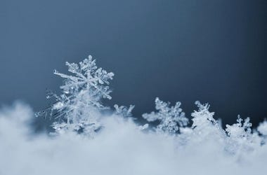 Snowflake (Photo credit: Montypeter/Dreamstime)