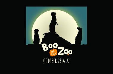 Boo at The Zoo | San Francisco Zoo