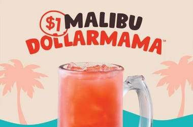 Malibu Dollarmamas