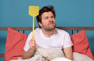 man in bed with fly swatter