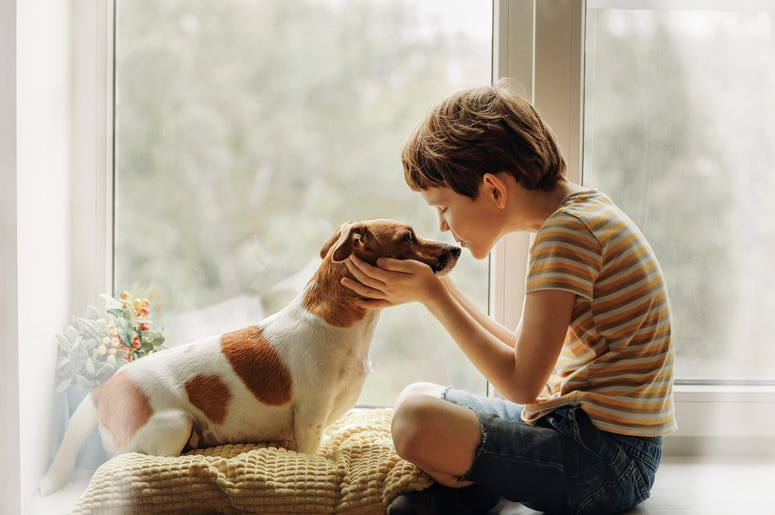 kid kissing dog