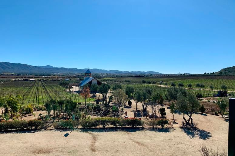 One of the Wineries