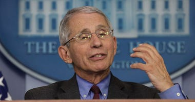 Fauci: Gathering over the holidays during COVID 'is a risk'