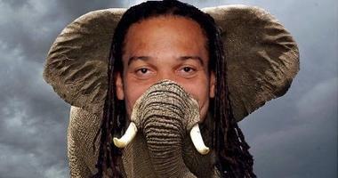 Elephant or Crowder Pic