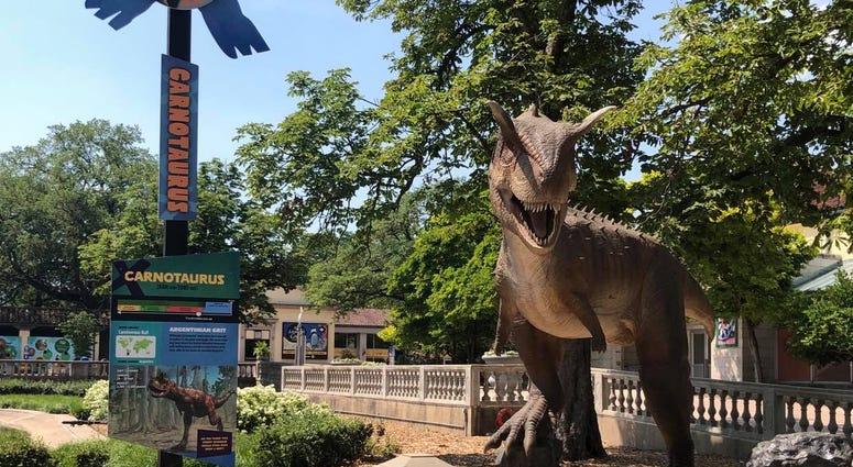Dinos Everywhere! at Brookfield Zoo