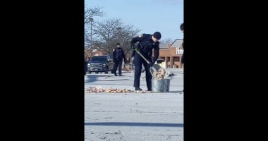 Wheaton Police clean up dozens of spilled donuts in the road