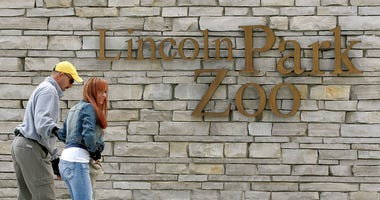 A couple skates toward an entrance to Lincoln Park Zoo May 16, 2005 in Chicago, Illinois.