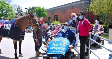 Horses Visit Hines VA