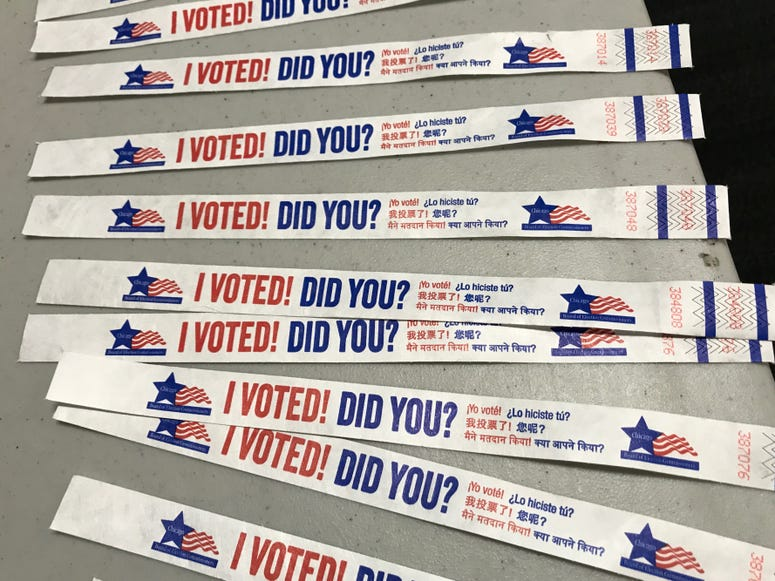 Voter Wristbands