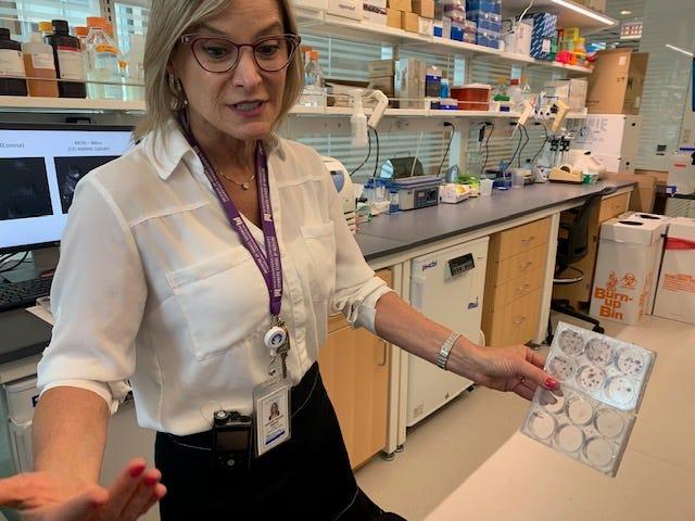 Dr. Simone Shredni