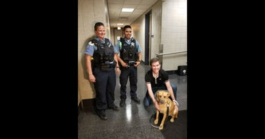 A dog was rescued by police Monday in Lake Michigan on the North Side.