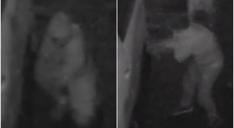 Images of vandalism suspects