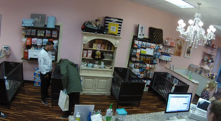 A pet store in Joliet is asking the public for help in identifying the men who allegedly stole a French bulldog puppy on Monday afternoon.