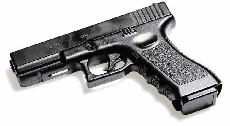 Gun File Photo