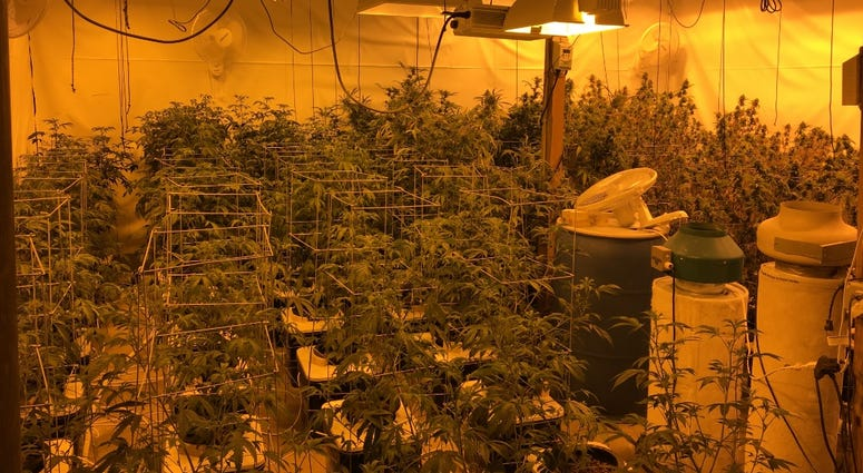 Pot Warehouse Kane County