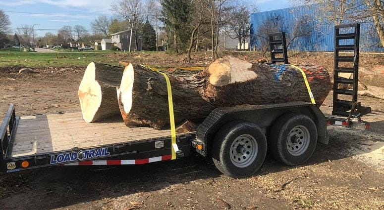 The South Elgin and Countryside Fire Protection District is getting two new fire stations,but construction required cutting down some trees. Now a 19-year veteran of the department is re-purposing some of those trees.