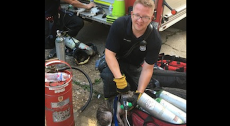 Evanston Fire Department rescued four animals after extinguishing a fire, Aug. 20, 2019.