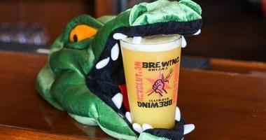 Humboldt Gator beer