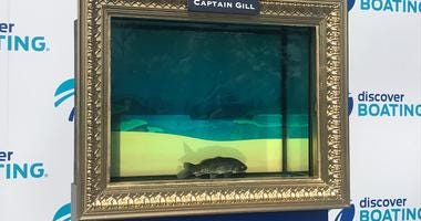 Captain Gill